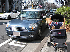 Img_8083a_2